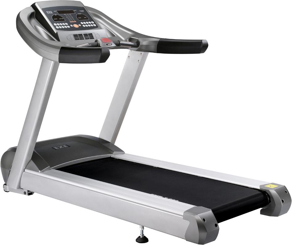 Dog Walker Treadmill