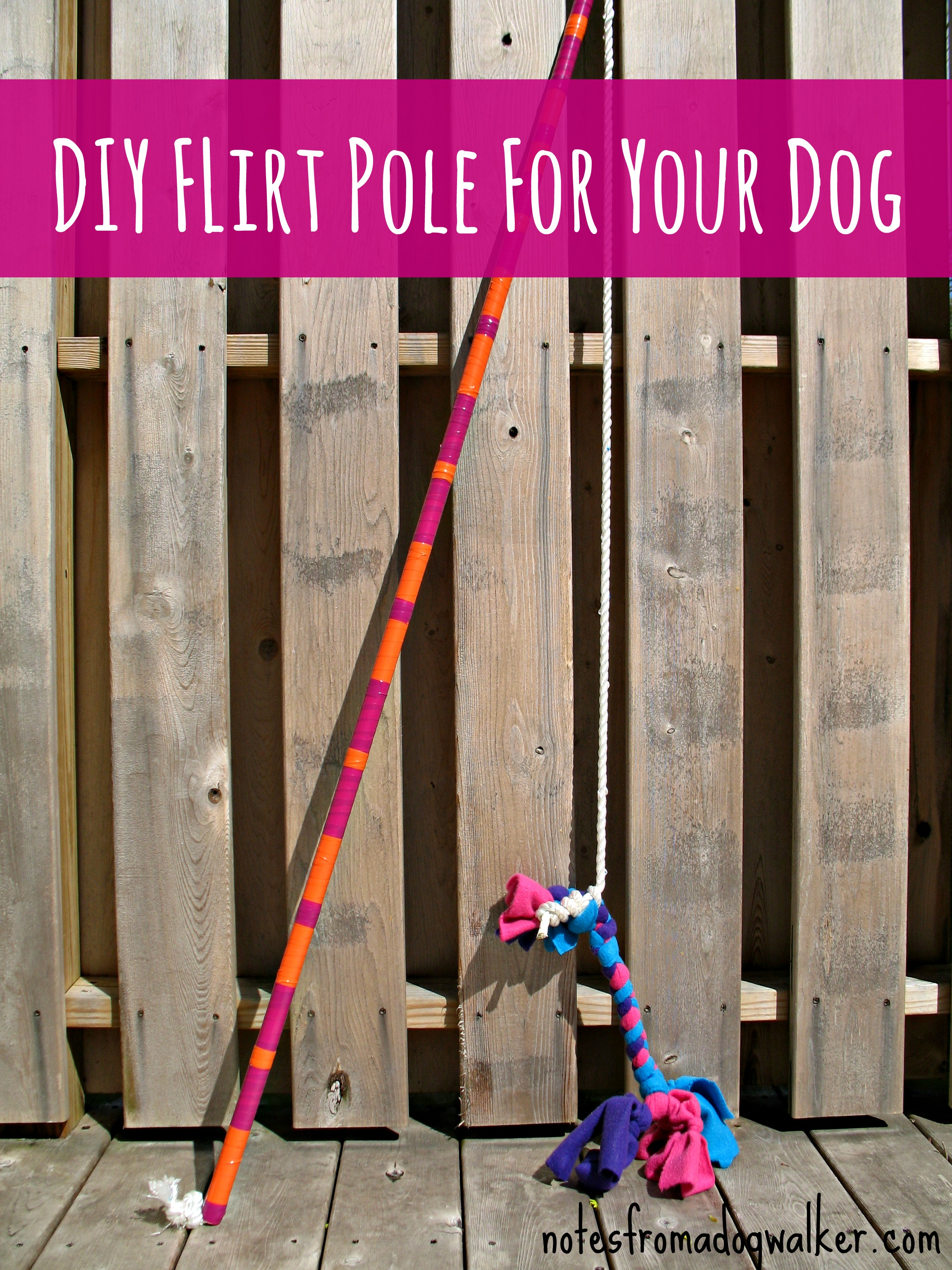 The Flirt Pole Dog Toy or Life Changer