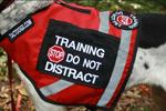 training_vest_sm