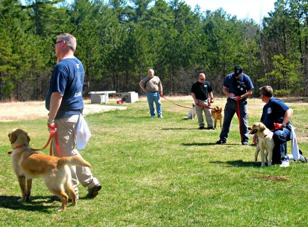 State Farm Arson Dog Spring Training 2013