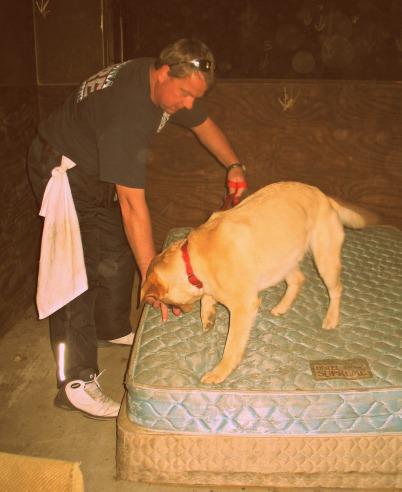 state farm arson dog training