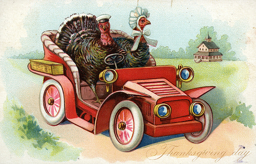 Why bother with a harness when turkeys can clearly drive themselves to town? (source)