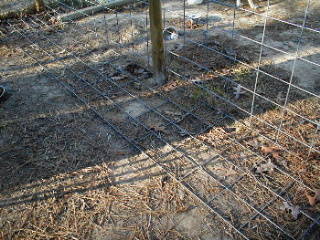 Peace In The Yard 7 Ways To Dog Proof Your Fence 171 Dogs