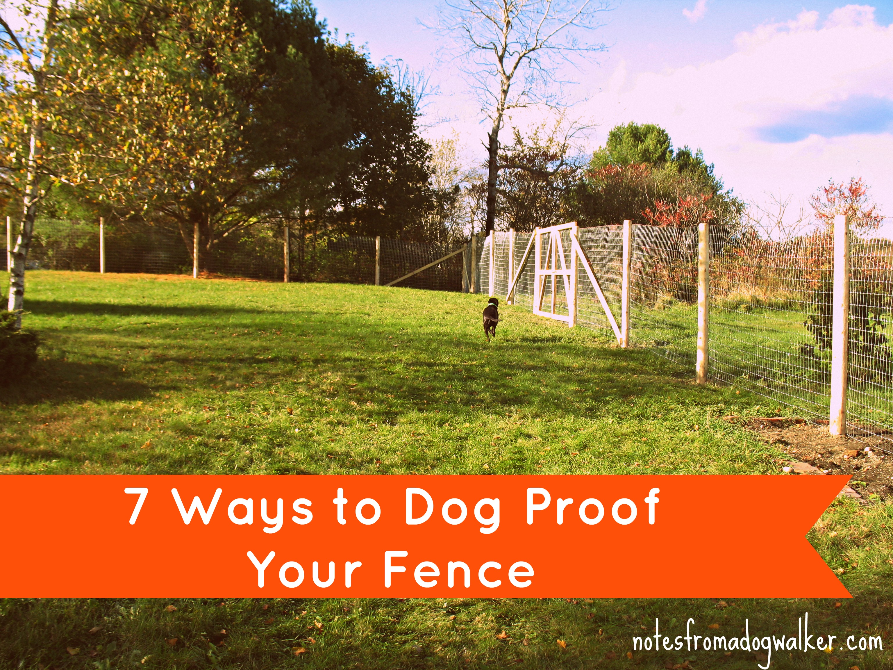 Peace in the Yard: 7 Ways To Dog Proof Your Fence | notes from a dog ...