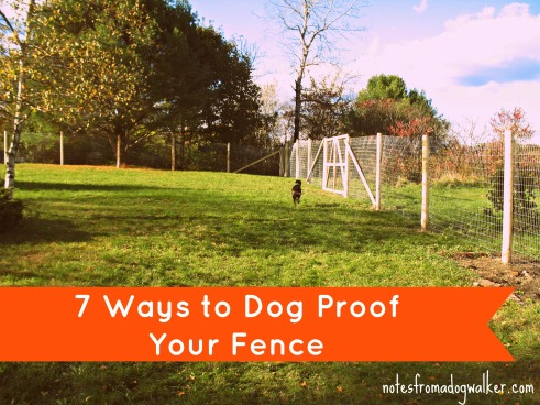 7 ways to dog proof fence