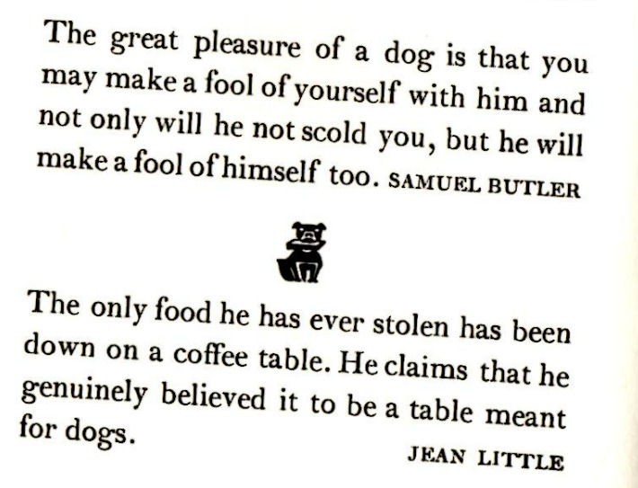 quotes Incomplete Dog Names