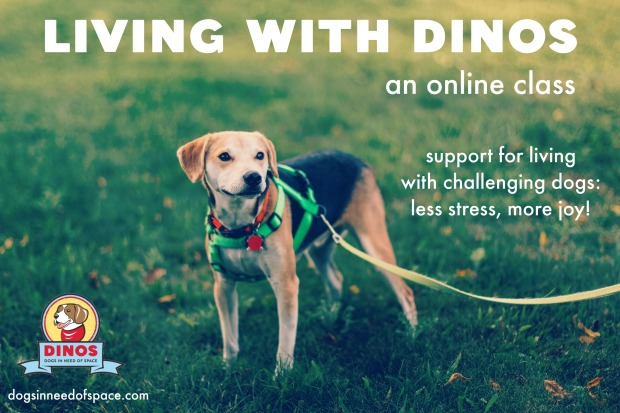 dinos-online-course-two